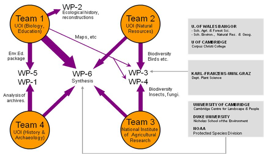 THALIS project structure (image)